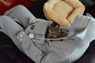 cat-pouch-hoodie-1