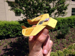 Covert Autonomous Disposable Aircraft