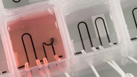3d-print-heart-on-chip